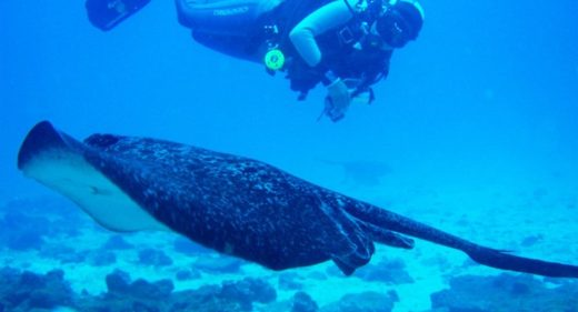 viajes exclusivos Maldivas, viaje atolón Maldivas